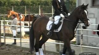 Hubertus Bonanza 2011.11.06. f