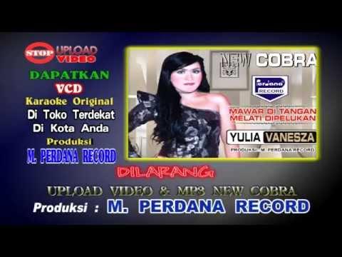 Mr Di Tangan Melati Dipelukan -  Yulia Vanesza  - New Cobra [ Official ]