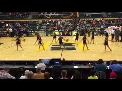"""USF Spirit Squad """"How Deep is Your Love"""" Timeout"""