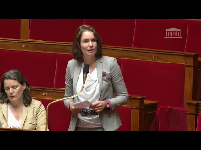 Intervention dans l'hémicycle : la question  des grands-parents