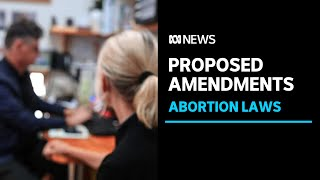 NT laws to be reformed, making it easier for later-term abortions l ABC News