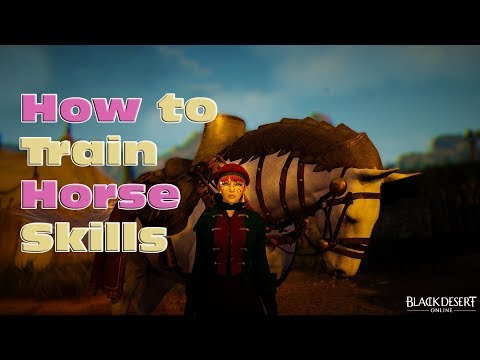 BDO - How To Train Horse Skills + Skill Coupons + Faster Training / Skipping Mini-game