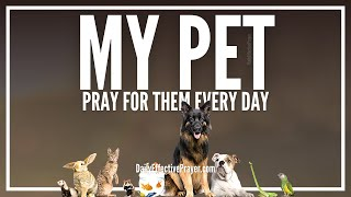 Prayer For Pets - Prayers For Animals (Dogs, Cats, Horses, Etc)