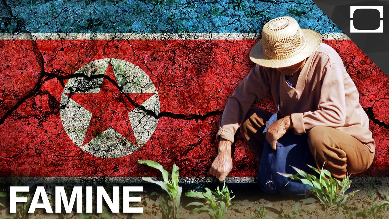 the serious problems of widespread starvation and famine in north korea