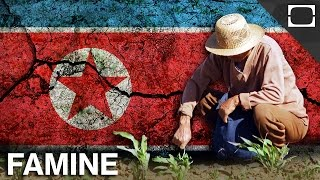Is The North Korean Government To Blame For Starving Citizens?