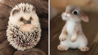 Cute baby animals Videos Compilation cutest moment of the animals  Soo Cute! #12