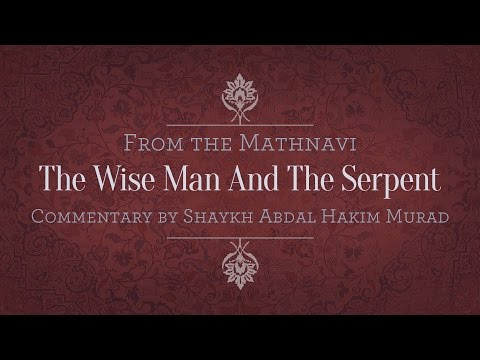 The Wise Man and the Serpent
