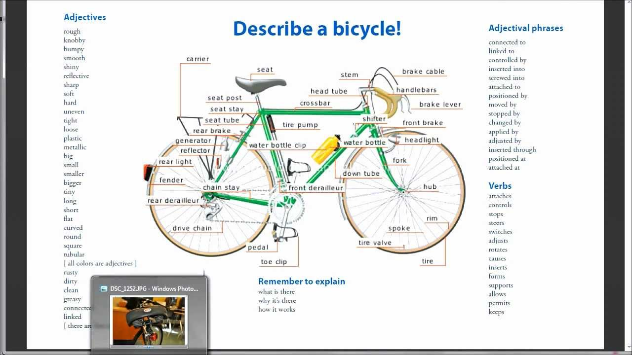 Describe A Bicycle Youtube Anatomy Diagram