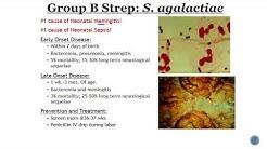 Group B Streptococcus GBS