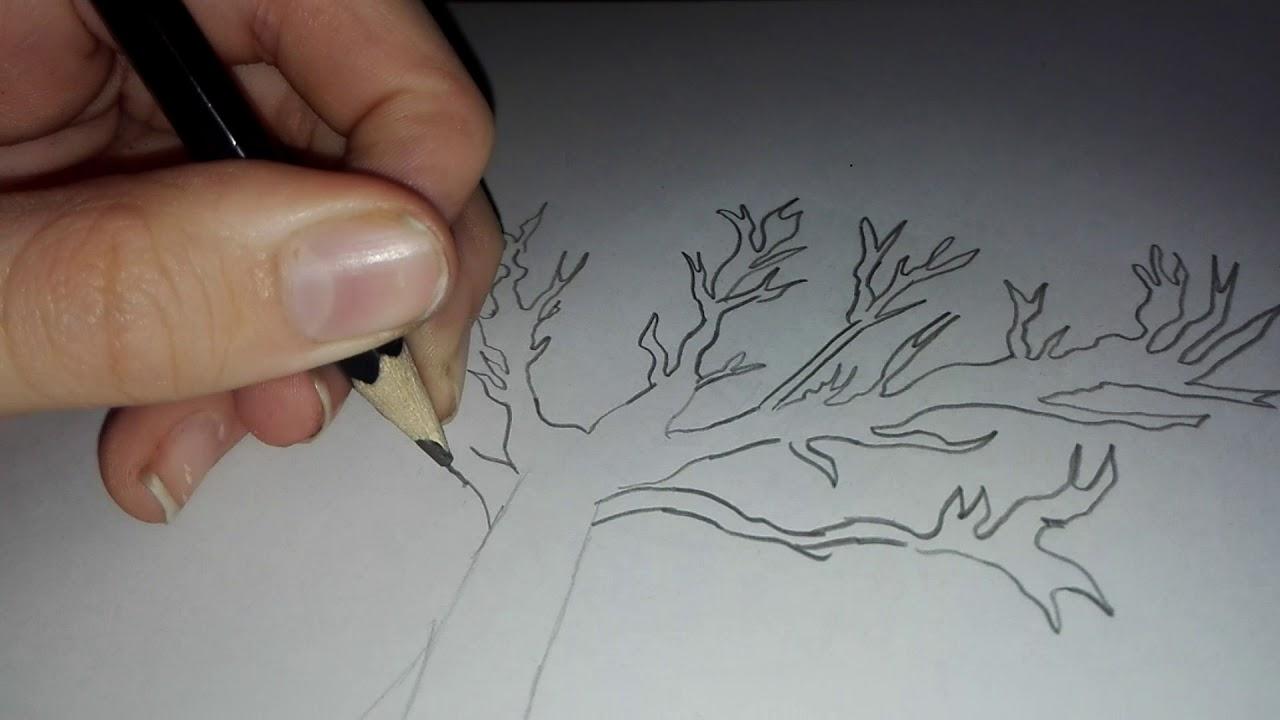 Come disegnare un albero spoglio youtube for Foto di alberi da colorare