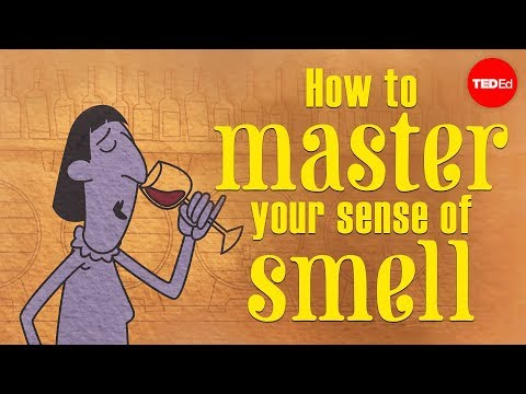 How to master your sense of smell - Alexandra Horowitz