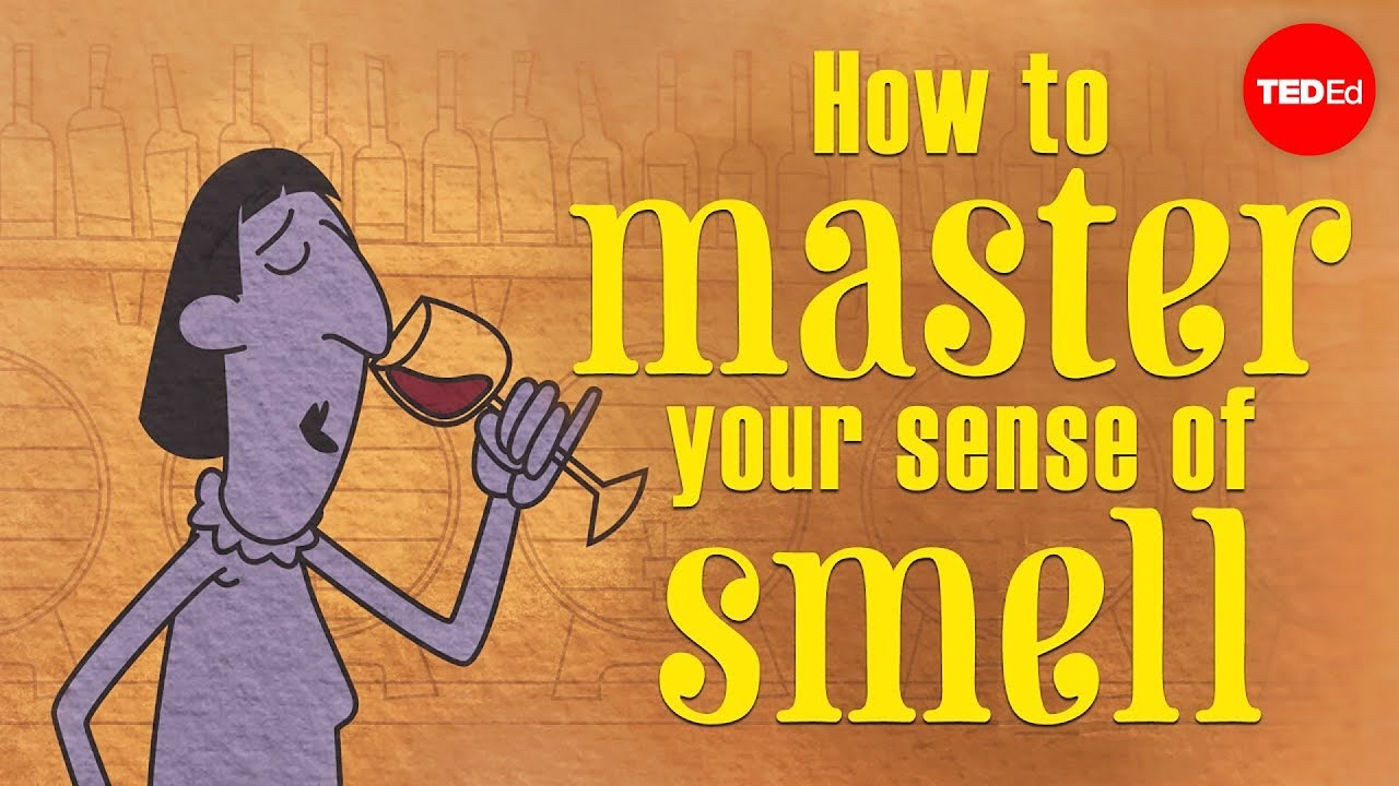 f9e1ea73619 How to master your sense of smell - Alexandra Horowitz - YouTube
