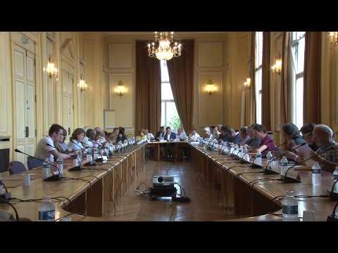 Conseil municipal du mercredi 19 juillet 2017