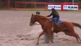 Aqha Casha Flit Barrel Horse