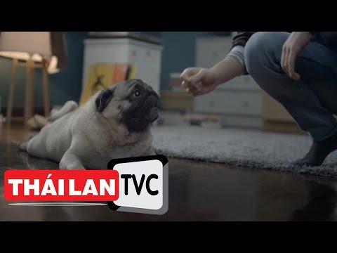 Thailand TVC | #Dtac Sim - Dog Detective