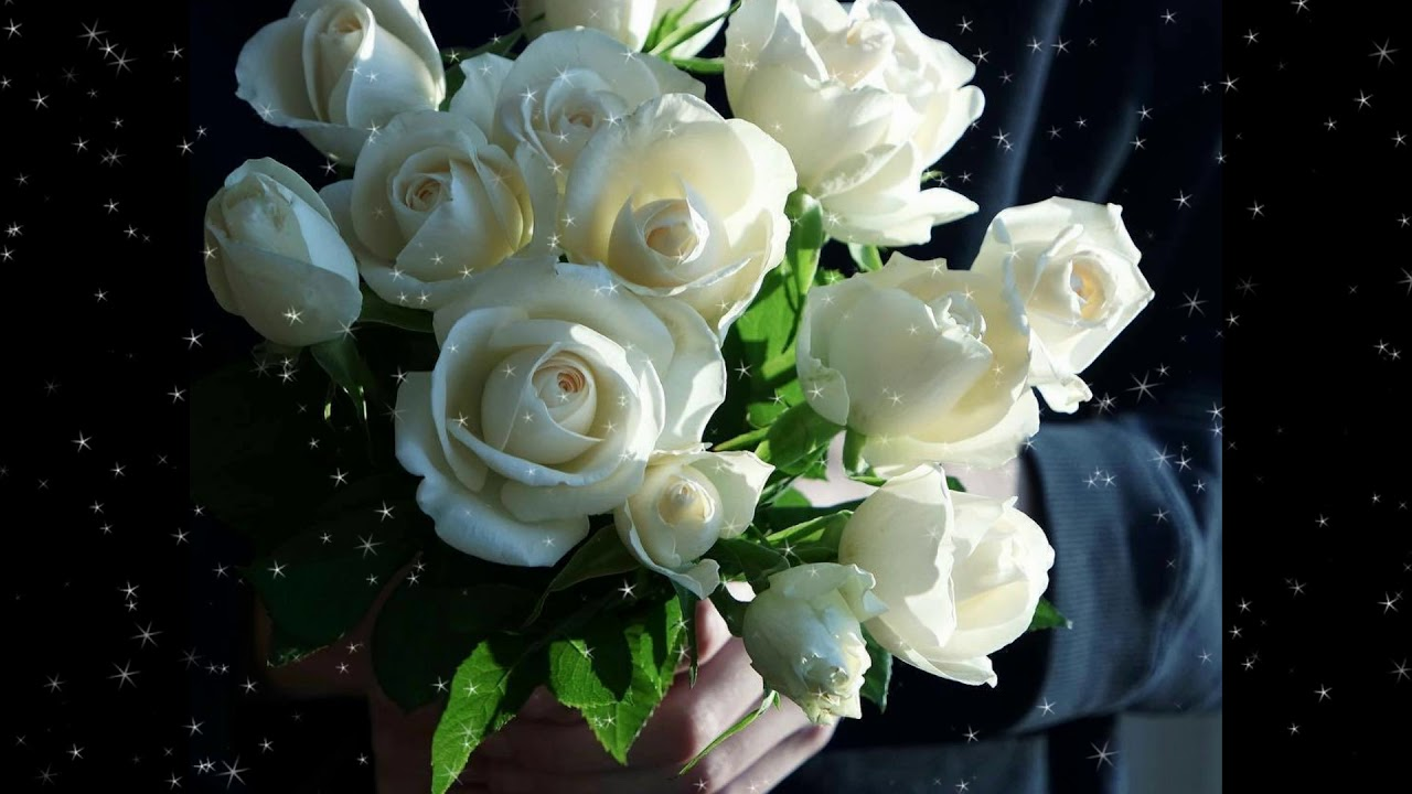 мне букеты белых роз для любимой фото самые искушенные