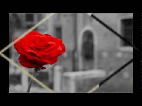 Delta Goodrem- Not Me, Not I Lyric Video