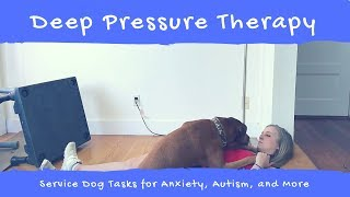 Teach your Dog Deep Pressure Therapy
