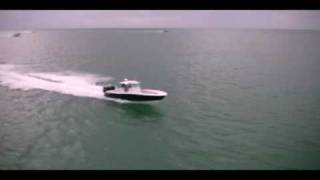 Invincible vs. Yellowfin Yachts