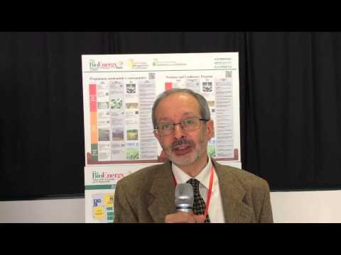 BioEnergy Italy 2015 - Maurizio Petruccioli