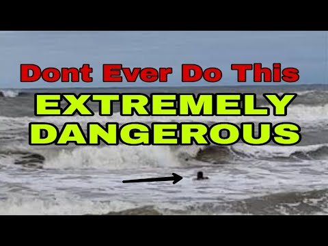 Extreme Dangers Of Swimming Shark Bait Out Sharkathon 2019