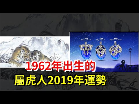 1962年出生的屬虎人2019年運勢,[星座運勢大全]