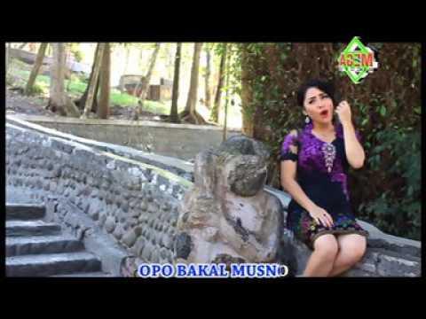 Vita KDI - Kembang Terate [OFFICIAL]