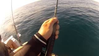 Jetski Fishing For Huge Yellow Tail