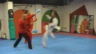 Weight Vest Taekwondo