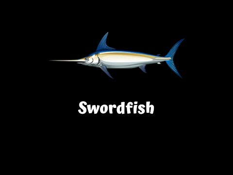 FISHAO | Swordfish (5*)