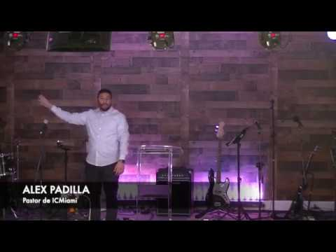 El Fruto de la Libertad  3 By: Alex Padilla