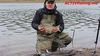 Зимний фидер на реке Днестр!...