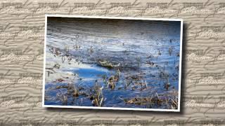 Фотограф на рыбалке. Весенняя ловля щуки на мелководных водоемах.(Вместе с профессиональным фотографом Михаилом Бирюковым, который расскажет, как лучше делать красивые..., 2015-04-02T11:56:49.000Z)