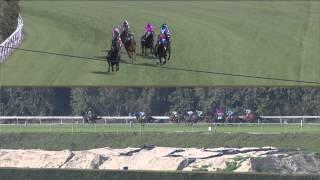 Irish O'Brien Stakes Winner - Cal-Bred Bench Glory