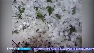 Стәрлетамаҡ районында йомортҡа ҙурлығы боҙ яуған