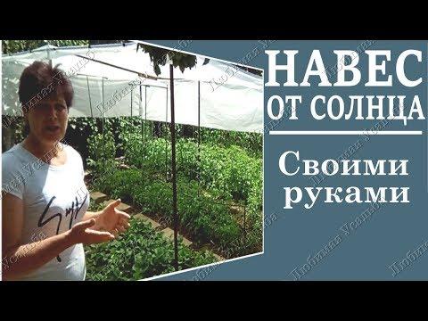 Как защитить овощи от жары  Делаем навес своими руками