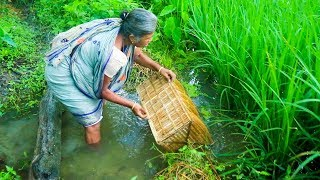 Traditional Fishing Techniques - Fishing by village people