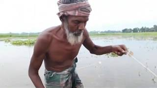Primitive Fishing: Primitive Fisherman catch lot of fish by Primitive net technology