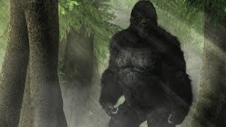 Bigfoot DNA Confirms They Are A Hybrid Species