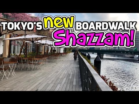 Tokyo's New Boardwalk | And the earliest Cherry Blossoms ever