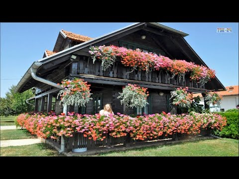 House & Garden - Flower Around The Houses Ideas - YouTube on house table ideas, house furniture ideas, hydrangea bed ideas, house environment ideas, home decorating ideas, house frontage designs with shutters, house color ideas, house made out of plants, apple ideas, house stone ideas, house plants for asthmatics, flower ideas, house rock ideas, house planter ideas, house plants that flower, house plan ideas, house dog ideas, front of house design ideas, house pool ideas, house building ideas,