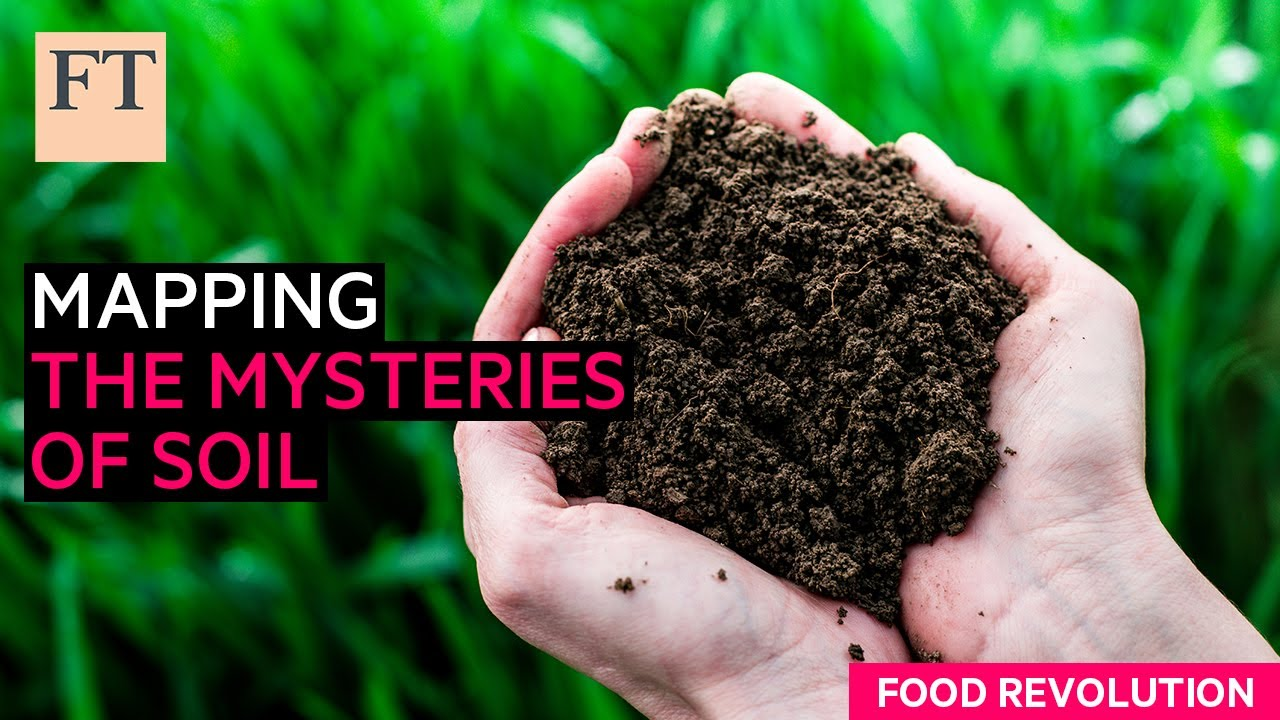 Metagenomics: mapping the mysteries of soil   FT Food Revolution