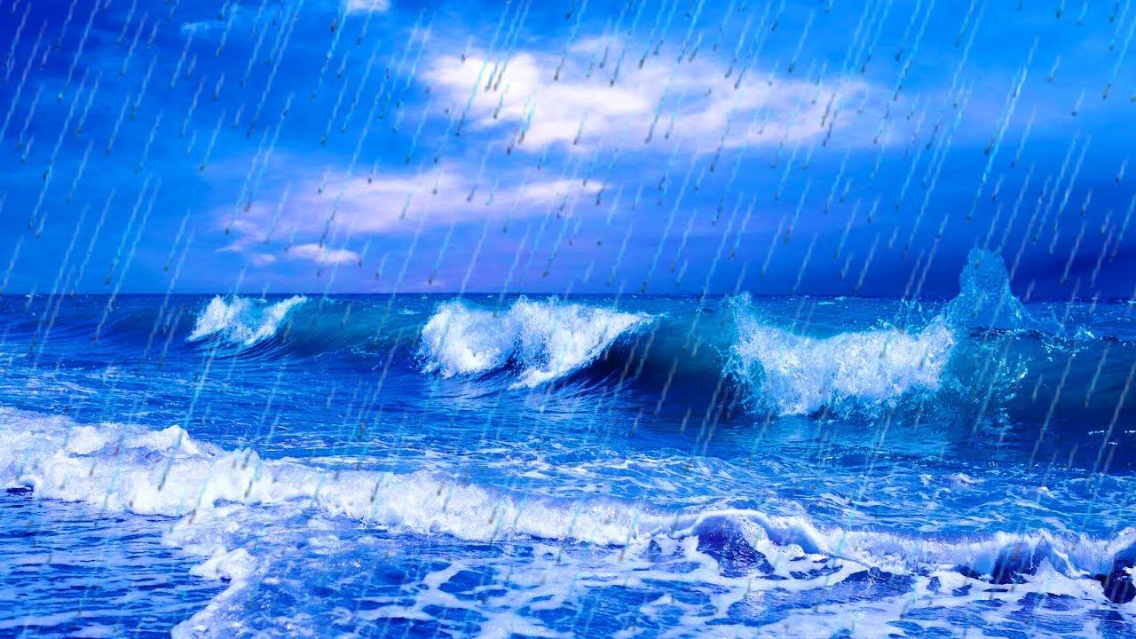 Live Wallpaper Fall Hd Jungle Sounds Rain And Sea Waves Nature Sleep Sound