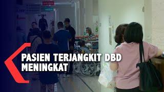 DBD Wabah DBD mengancam Indonesia. Hingga Kamis(5/3/2020) kemarin, Kementerian Kesehatan mencatat te.
