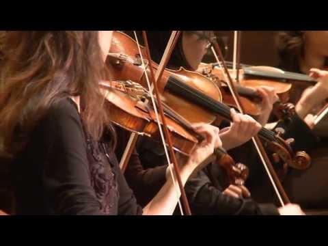 "Wagner SIEGFRIED ""Waldweben"" - AIMS Festival Orchestra - Gerrit Prießnitz"