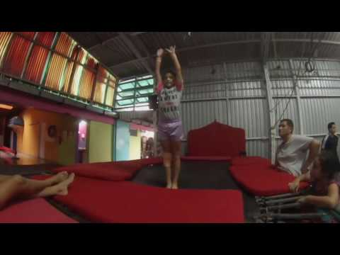 Pulga Gymnastics