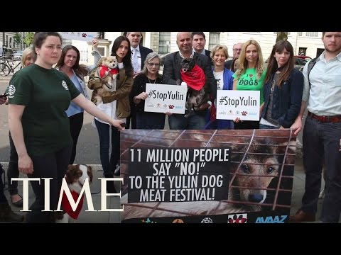 China's Gruesome Yulin Dog Meat Festival Cancelled | TIME