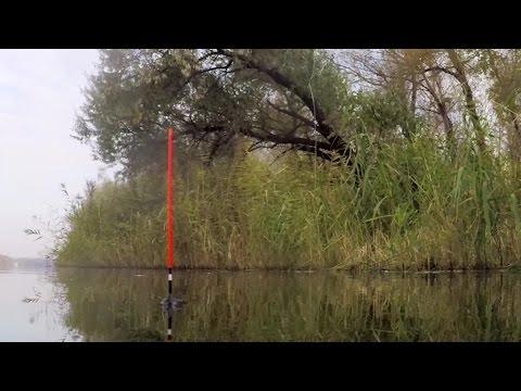 Река Обь описание, рыбалка
