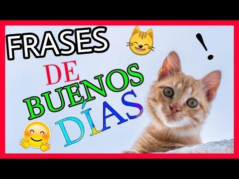 FRASES de BUENOS DÍAS con IMÁGENES TIERNAS!!
