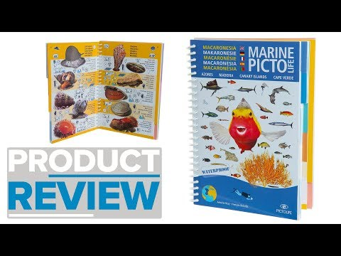 Hinchcliffe Marine Pictolife Book Review
